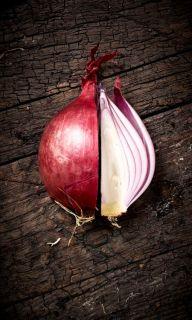 onion-layers